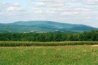 Blue Knob Mountain